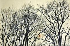 2014-Bomen