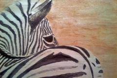 2015-zebra