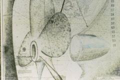 Schroef 2002