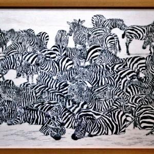2014 Zebra meute plankje