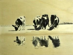 afb Landbouwgeschiedenis